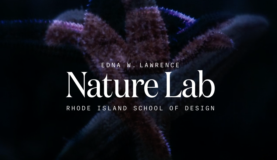 Edna W. Lawrence Nature Lab