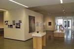 Faculty Biennial 2013