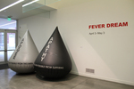 Fever Dream 2015 by Campus Exhibitions