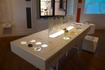 Biodesign: From Inspiration to Integration Exhibition by Nature Lab, RISD Co-Works, and Campus Exhibitions