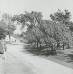 Tillinghast Farm