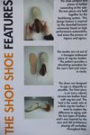 The Shop Shoe