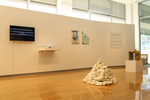Arc of Alchemy | Curated Graduate Exhibition 2013 by Campus Exhibitions