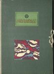 Abstract Pattern Portfolio by Mizuki Heitaro, Special Collections, and Fleet Library